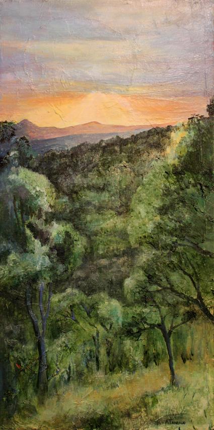 Forêt du Cap Bénat