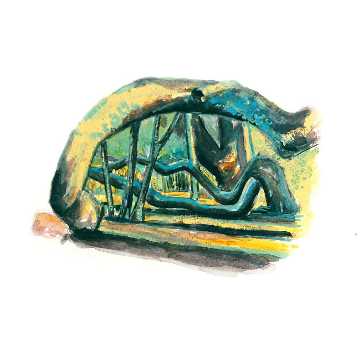 Aquarelle et gouache sur papier Anémomorphose de pin sur l'île du Gaou